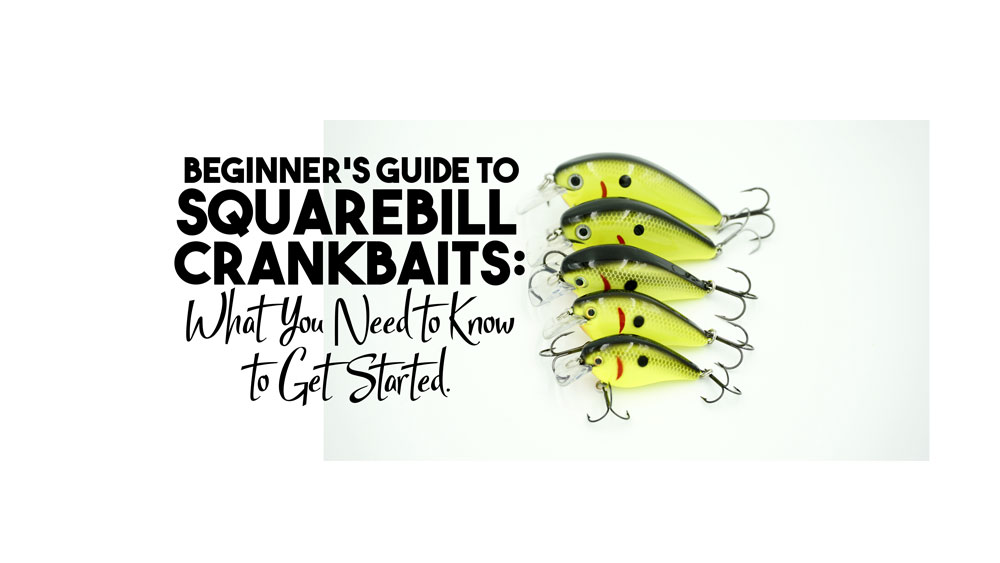 Beginner's Guide to Squarebill Crankbaits