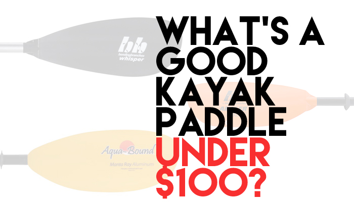 whats a good kayak paddle under $100 payne outdoors
