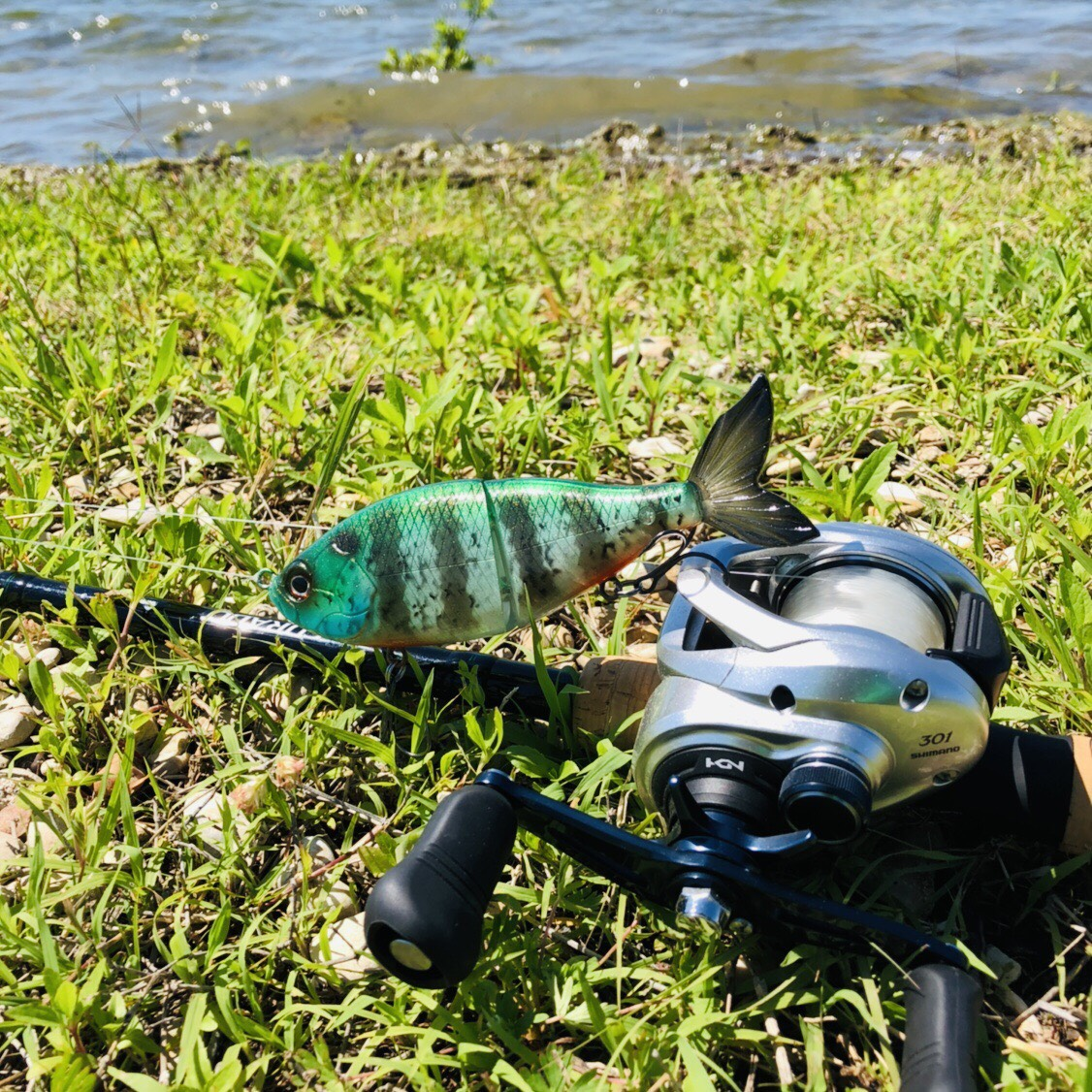 Logix Baits BB Glide Payne Outdoors Review Chris Payne Kayak Fishing Outdoor Reviews