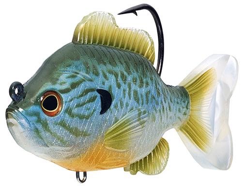 Spring Bass Fishing 101 LIVETARGET