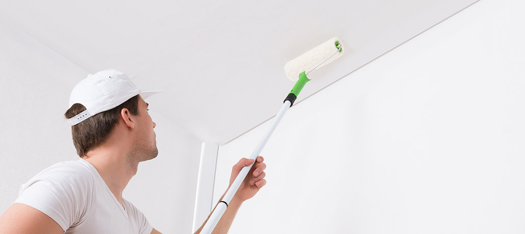 Professional Painting Service