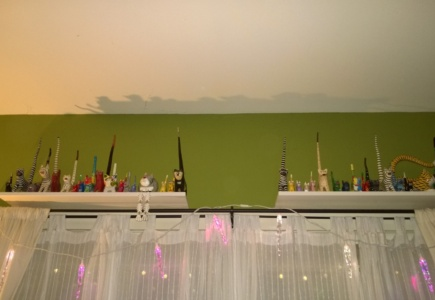 Shelves for my Long-Tailed Cats