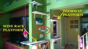 living room cat platform fail