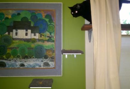 Downstairs Cat Platforms – Part 7