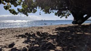 the beach near our hotel in maui