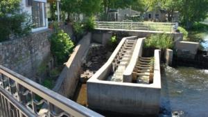 the ipswich river fish ladder upper falls