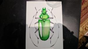 green bug chromatek tutorial on youtube - watercolor pens