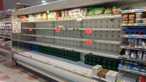 the new normal - no eggs at market basket in rowley