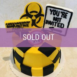 Quarantine Birthday Cake