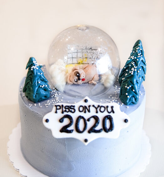 Piss on You 2020 Cake