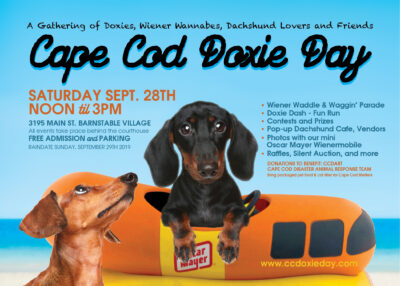 Cape Cod Doxie Day