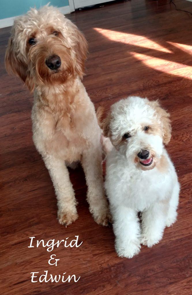 Ingrid&Edwin