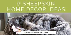 DIY Sheep Crafts   6 Sheepskin Home Decor Ideas   Shepherd Like A Girl