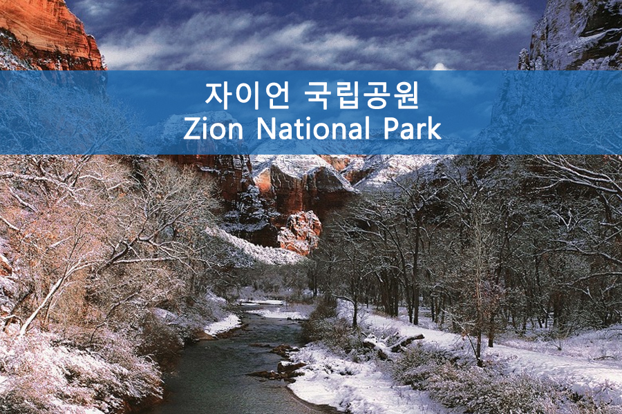 생동감 넘치는 신의 정원 자이언 국립공원