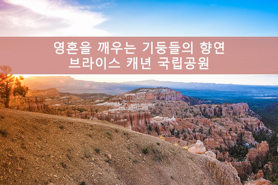 영혼을 깨우는 기둥들의 향연 브라이스 캐년 국립공원