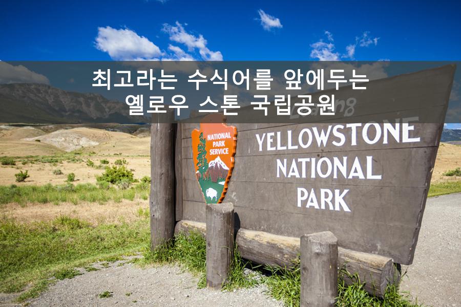 최고라는 수식어를 앞에두는 옐로우 스톤 국립공원