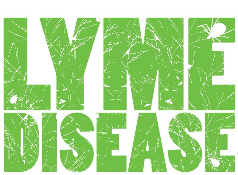 Lyme Disease: Why Is It So Hard to Treat?