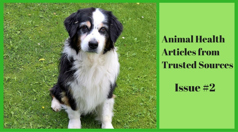 Animal Health Articles from Trusted Sources Issue #2