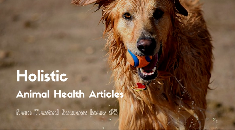 Animal Health Articles from Trusted Sources Issue #5