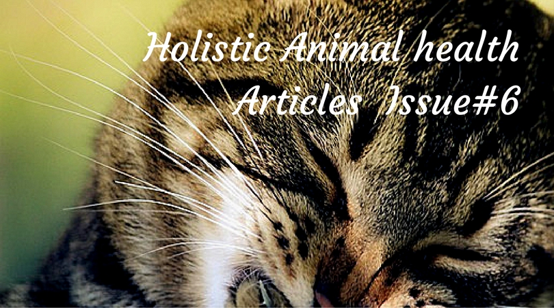 Animal Health Articles from Trusted Sources #6