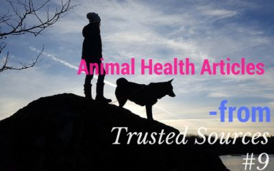 Animal Health Articles from Trusted Sources #9