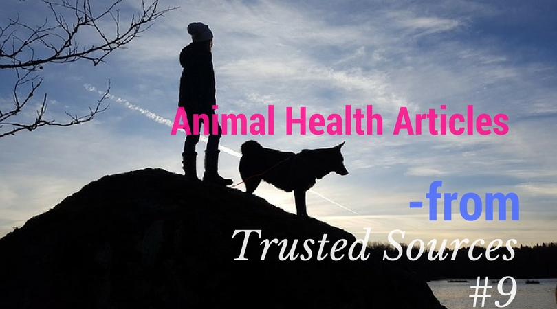 Animal Health Article