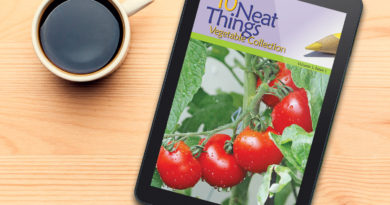 10 Neat Things Collections Digital
