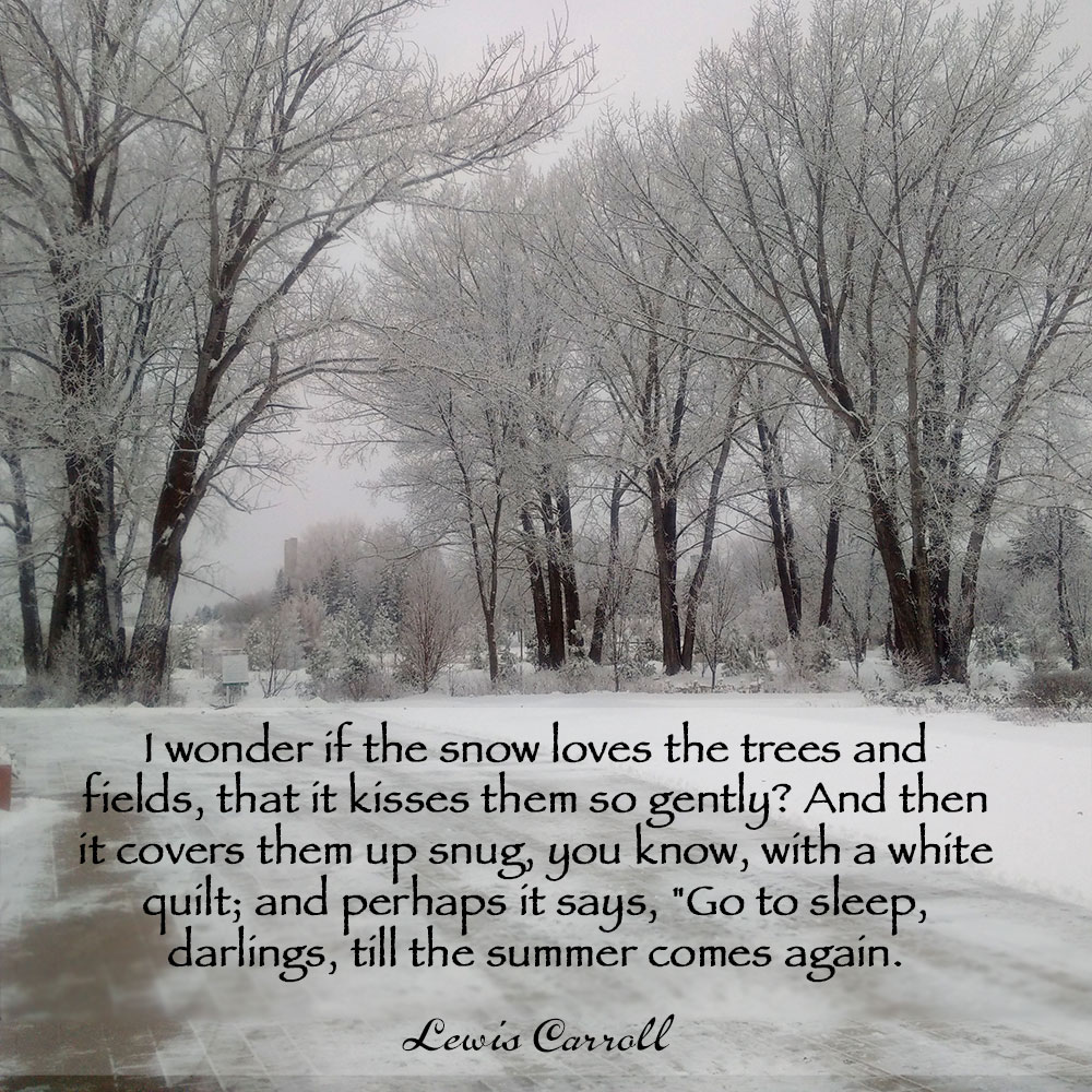 """I wonder if the snow loves the trees and fields, that it kisses them so gently? And then it covers them up snug, you know, with a white quilt; and perhaps it says, """"Go to sleep, darlings, till the summer comes again."""" ~ Lewis Carroll"""