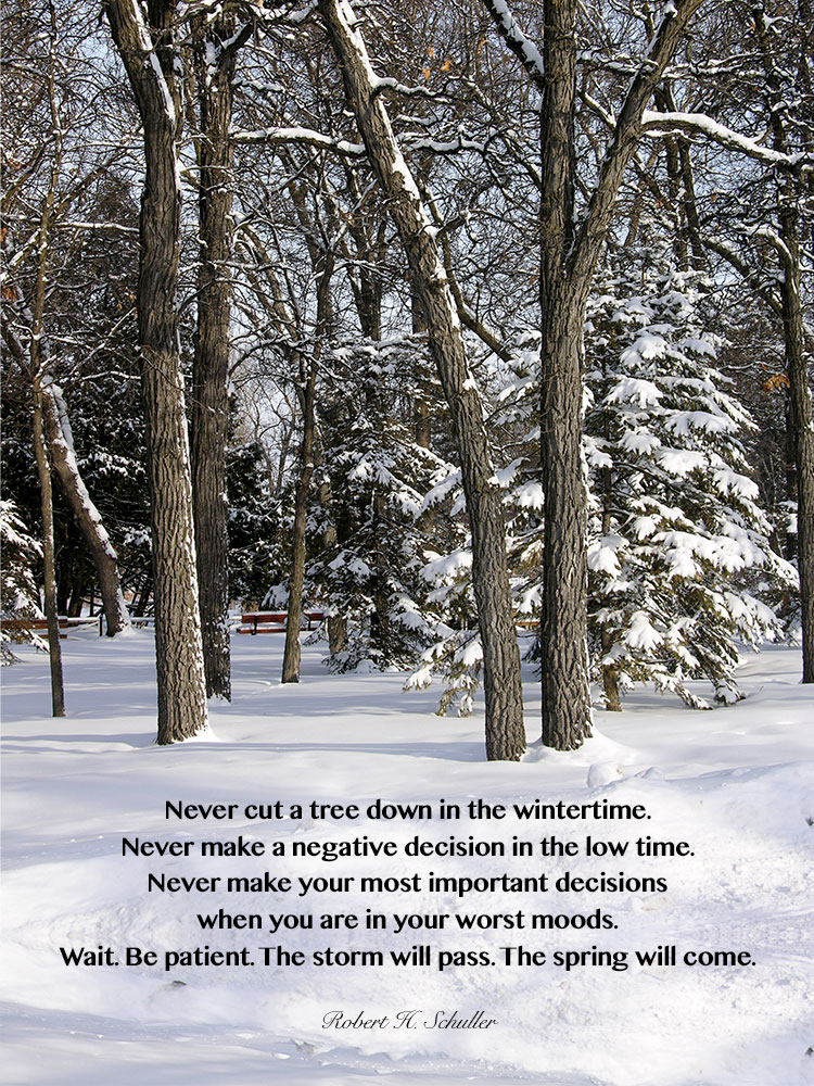 Never cut a tree down in the wintertime. Never make a negative decision in the low time. Never make your most important decisions when you are in your worst moods. Wait. Be patient. The storm will pass. The spring will come. ~Robert Schuller