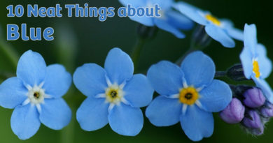 10 neat things about blue