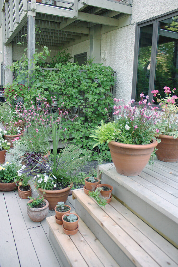 Container plantings fill the deck.