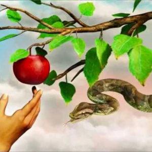 Adam and Eve's apple