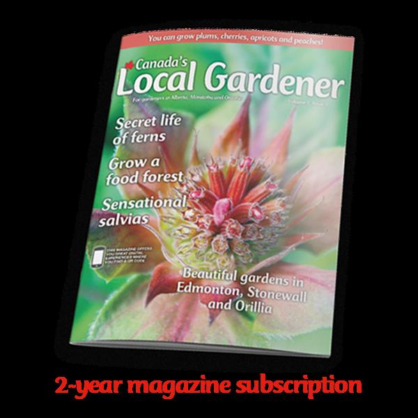 2 year magazine subscription