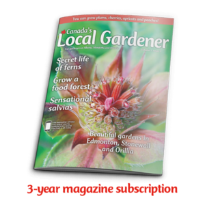 3 year magazine subscription