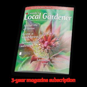 3 year magazine subscription