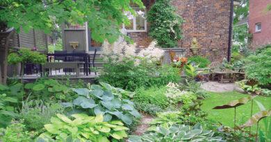 Lucille Crighton's Garden
