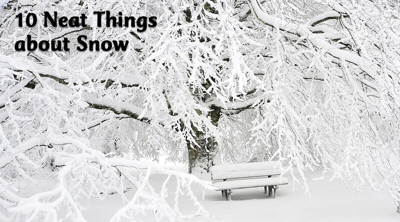 10 neat things about snow