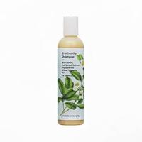 Syntonic Grothentic Shampoo   8 oz