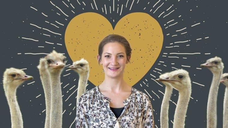 Partners, ostriches, and everything in between, Jesi will be there for you