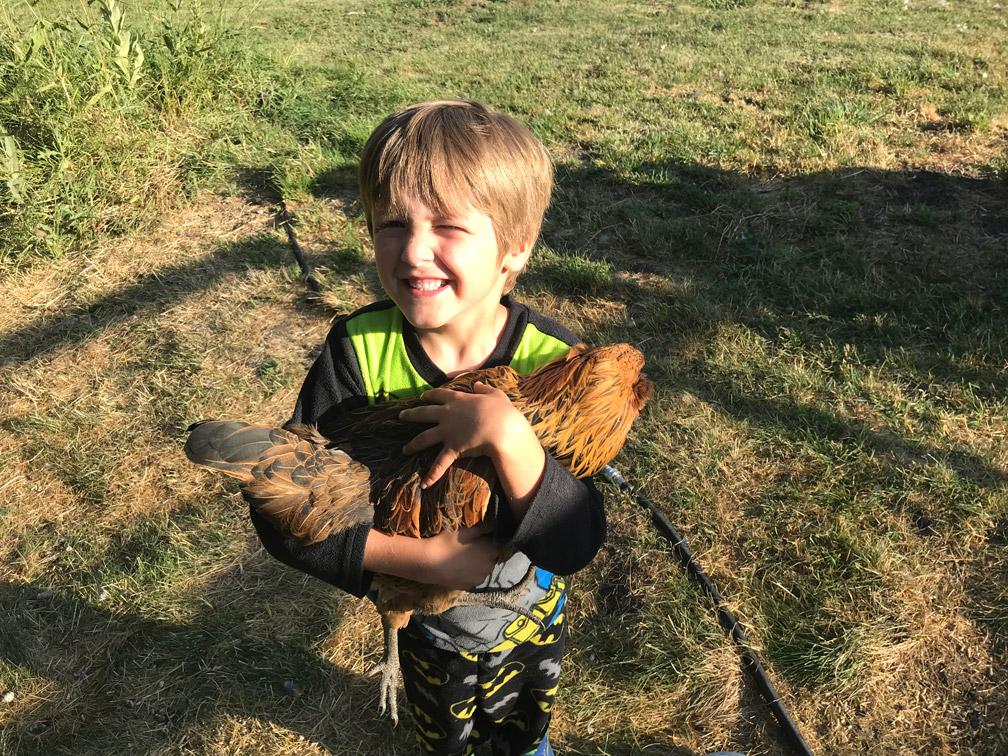 Kid With Chicken at Almosta Farm Cove Oregon