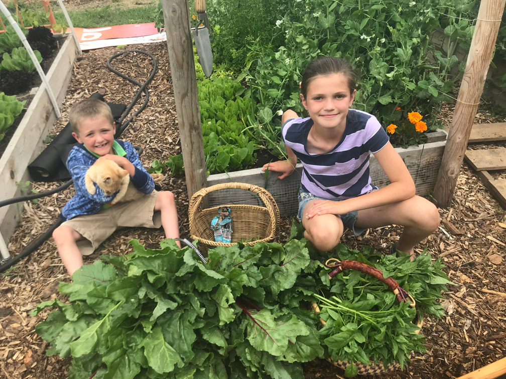 Kids and Cats in the Garden at Almosta Farm Cove Oregon