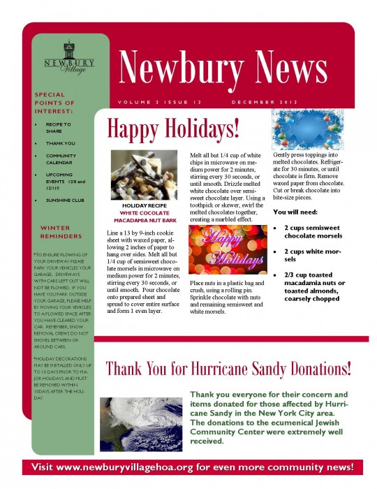 Dec2012Newsletter-PublicVersion