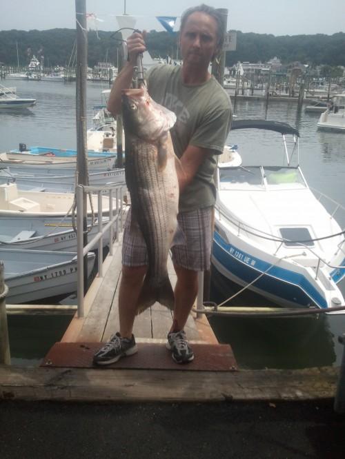 25 Lb Striped bass
