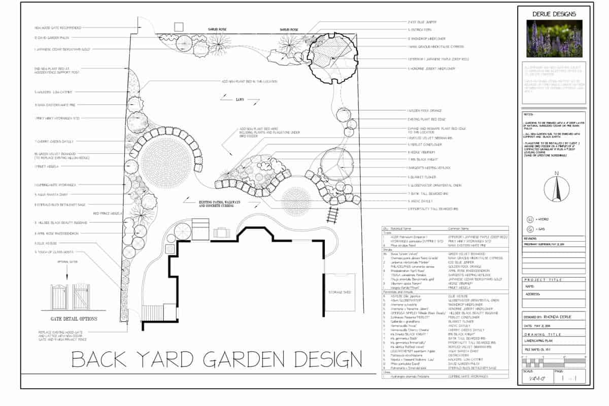 Plan for a Backyard Garden Design with Organic Lines