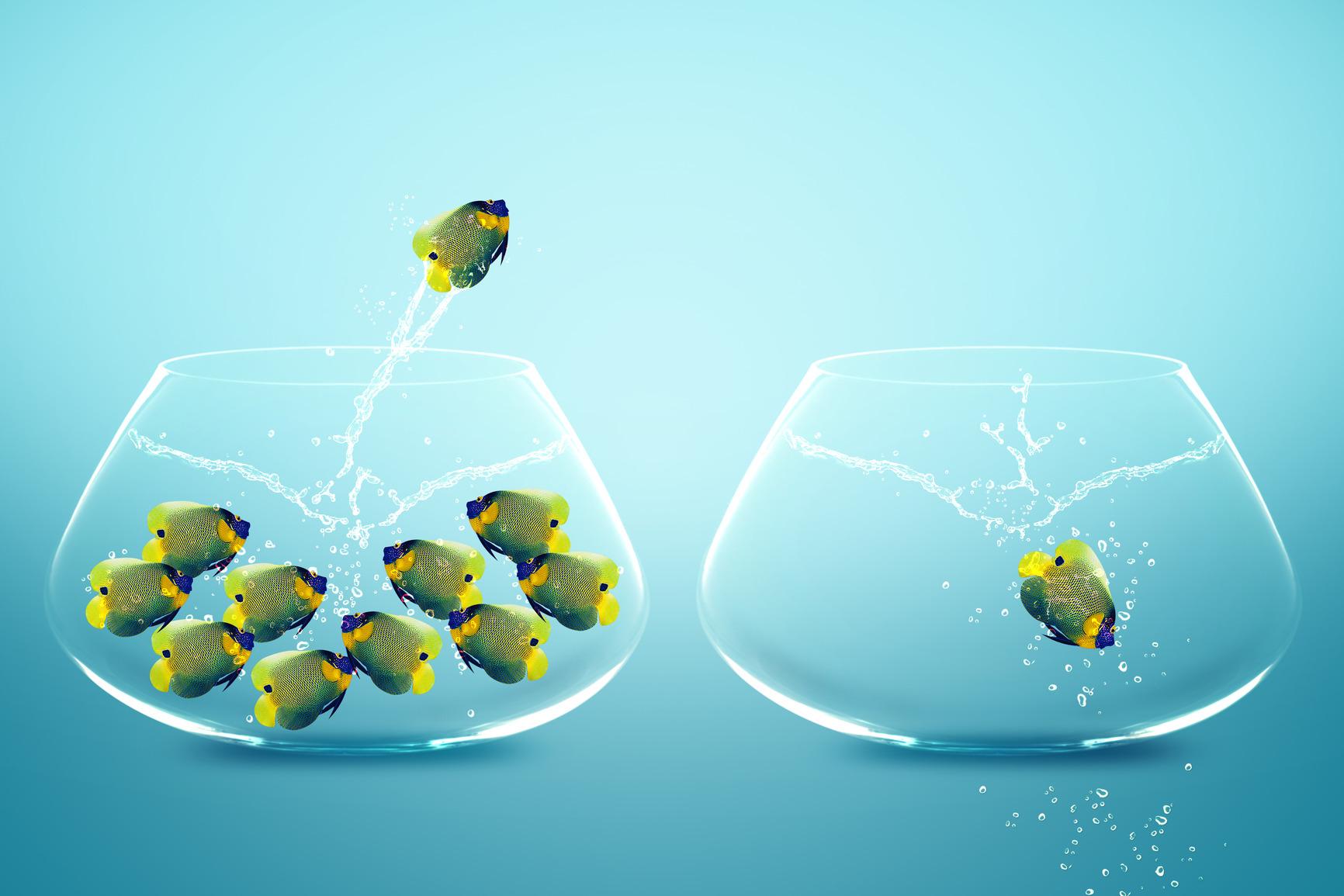 gestion du changement, PR Gestion-conseil