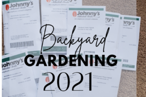 backyard garden arizona homestead
