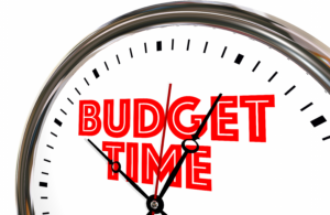 A Financial Must – An Annual Budget for Pest Control Business Operators