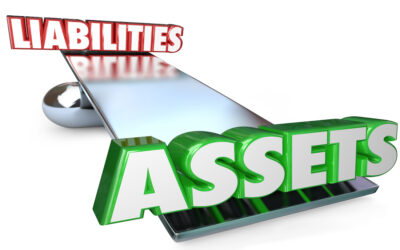 Assets and Liabilities: Pest Control Business Balance Sheet