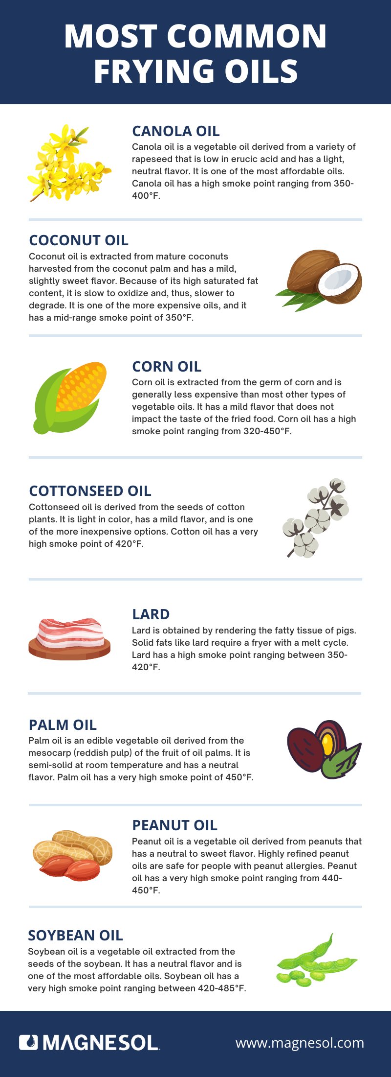 Most Common Frying Oils