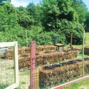 Mixing Bowl- Straw bale garden
